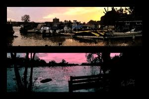 Thames Views