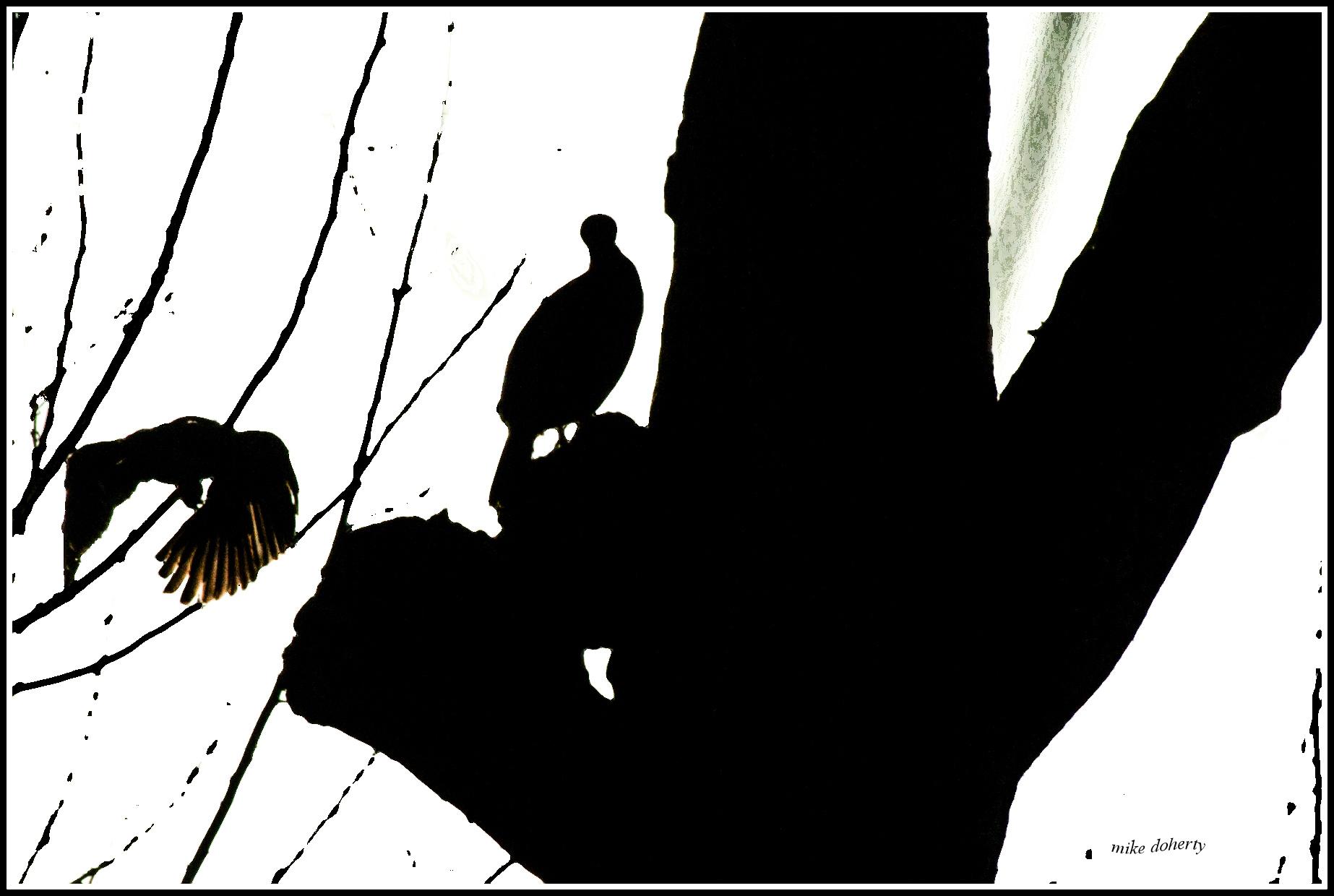 Branch telegraph. pic for poem